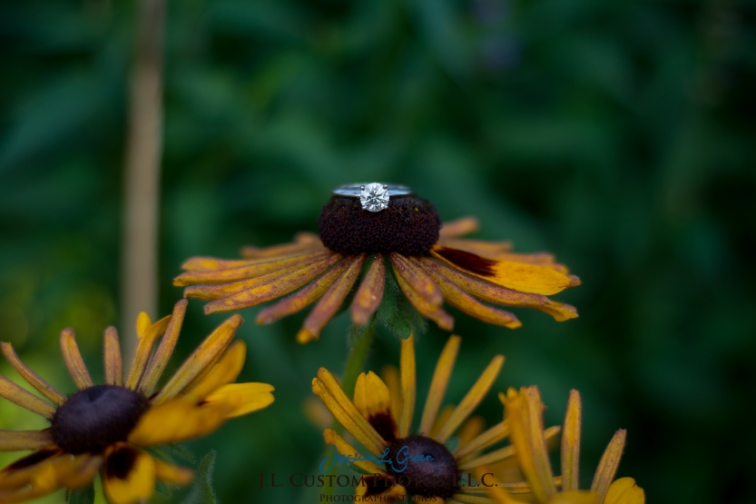 Bloomington Greenfield IN Indiana University  Engagement Wedding Photographer Oliver Winery Summer Bride Groom -13