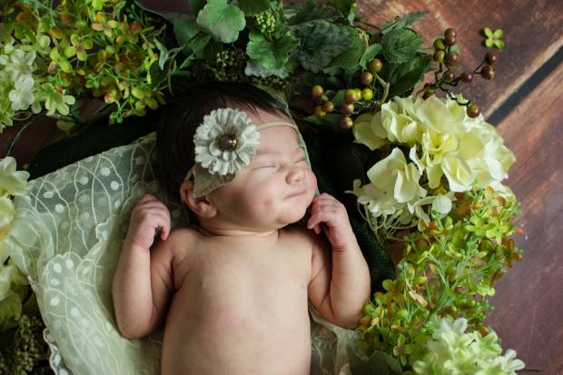 Greenfield, IN newborn photographer J.L.CustomPhotos Jessica Green Photography custom  baby photos -3834