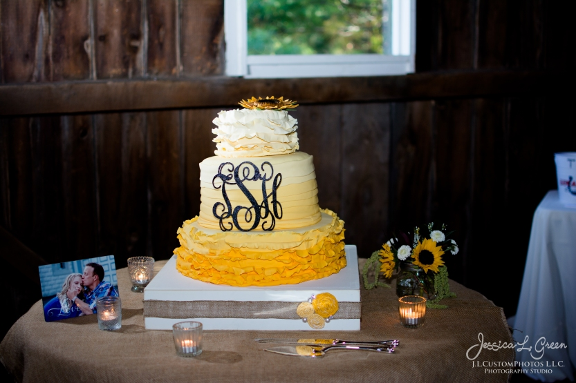 Noblesville IN Carmel Indiana Wedding Photographer Mustard Seed Gardens J.L.CustomPhotos DIY Barn wedding-7276