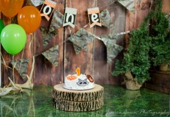 Greenfield, Indiana, Photography, Photographer, Photos, Jessica, Green, Greenfield, IN, JLCustom Photography, Jessica Green, Legler, Jessica Legler, Jessica Green Photography, 46140, Central Indiana, Indianapolis, First Birthday, Animal Birthday cake,One year old,Balloons,Ribbon